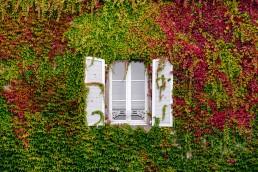 Malermeister-Lippstadt gestaltet Ihre Fassade umweltgerecht